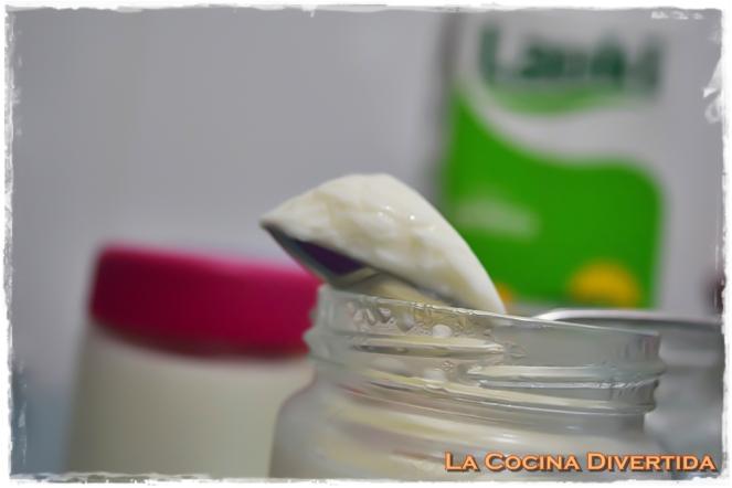 yogur casero lauki